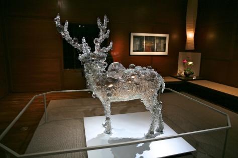 taxidemied-deer-1